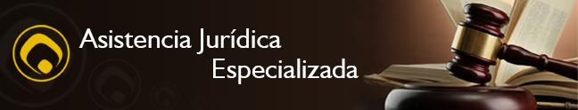 Asistencia Jurídica Especializada